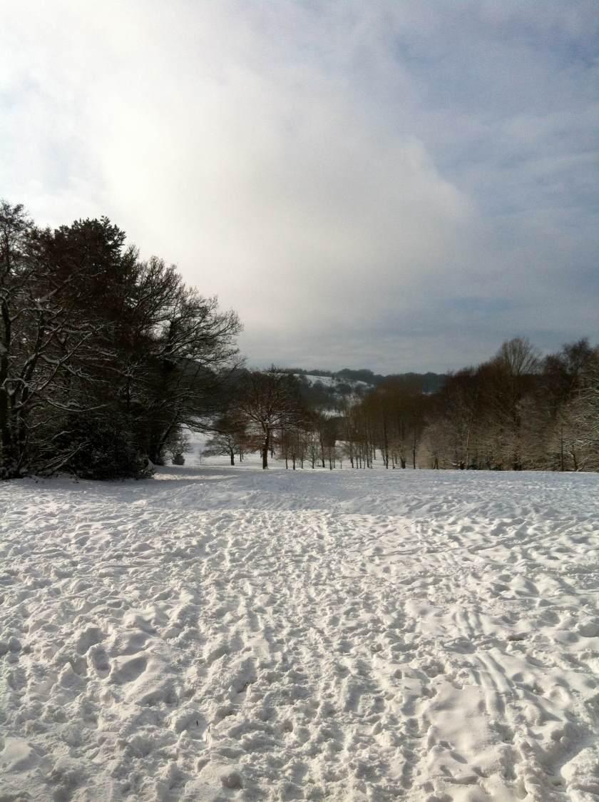 Winter Walk 18